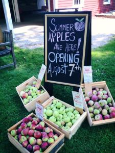 Opening Day Apples